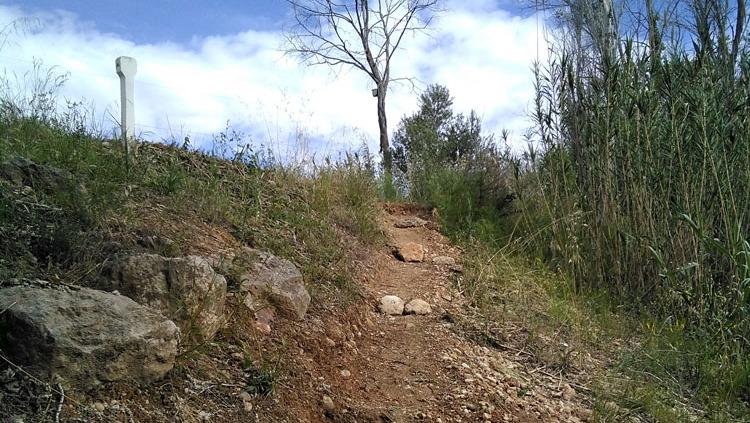 Camí i accés al Celler abans de la millora