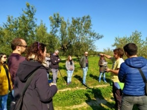 Fruits-del-Gaia-Ecoturisme