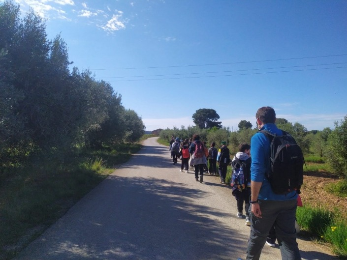 Passeig a l'activitat Ecosistema agricola